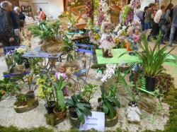 Le printemps des orchidees 1