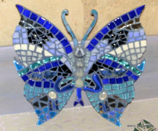 papillon-001.jpg